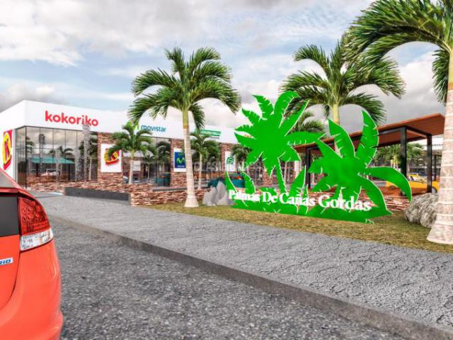 Locales y Bodegas, Alquiler, Pance - $30.000.000